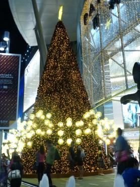 One more Christmas tree
