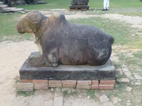 Nandi, mount of Shiva