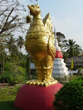 Chicken at Wat Pai Lom