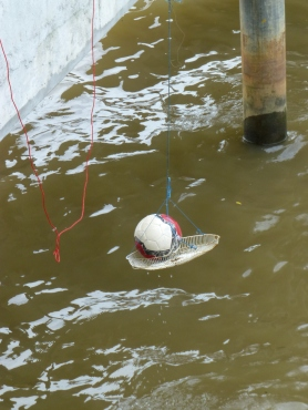 Fishing the ball out of the iver