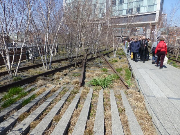 The High Line under