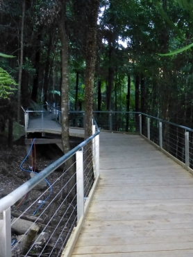 Walkway in Jamison Valley